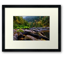 The Look Of Nature ~ Lower Lake Creek ~ Framed Print