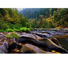 The Look Of Nature ~ Lower Lake Creek ~ Photographic Print