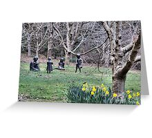 Family - Yengo Historic Gardens - Mt Wilson NSW Australia Greeting Card