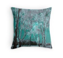 River of Dreaming Throw Pillow