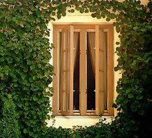 Cottage Window  ^ by ctheworld