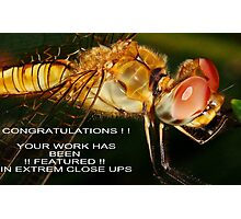Extreme Closeups Challenge Banner Photographic Print