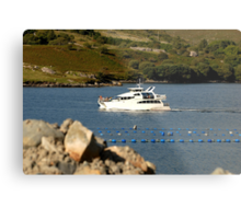 Cruiser at Killary Harbour, Ireland Metal Print