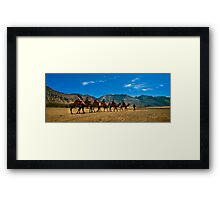 Camel Carvan in Nubra Valley Framed Print