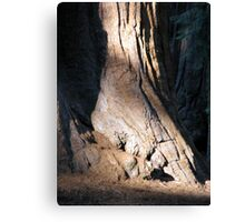 Strong Base Canvas Print