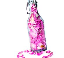 Bottle of Love by Denise Abé