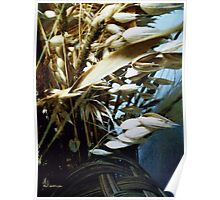 Wild Oats Gathered Poster