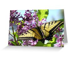 """""""September Butterfly"""" - 2 Greeting Card"""