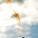 Flame by Carl LaCasse