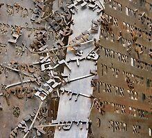 The fragment ll by dominiquelandau