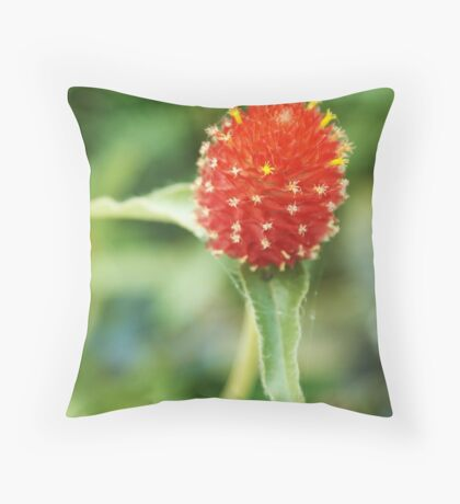 Red bloom on green in St. Paul. Throw Pillow