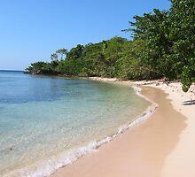 The Last Pristine Beach by westcountyweste