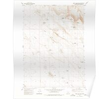 USGS Topo Map Oregon Weed Lake Butte 282037 1980 24000 Poster