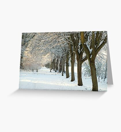 Winter Wonderland in Maynooth, Ireland. Greeting Card