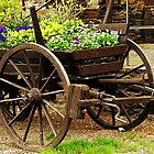 Flower cart by Vac1