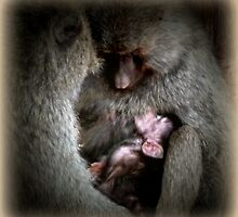 Mother Love by Roger Sampson