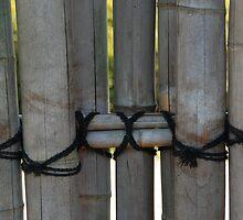 Bamboo Wall by Vac1