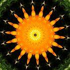 Orange sun by Vac1