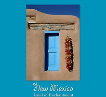 New Mexico Travel Poster by cinn