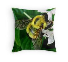 Bee At The Heart Of The Matter Throw Pillow