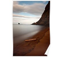Saltwick Bay Driftwood Poster