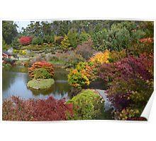 Autumn in Tasmania Poster