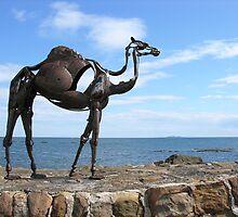 heavy metal camel by joak