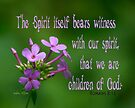 Witness with our spirit ~ Romans 8:16 by Robin Clifton