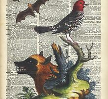 Animals Zoology old illustration over a Old Dictionary Page,Forest,Nature by DictionaryArt