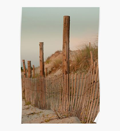 The Protected Dunes Poster