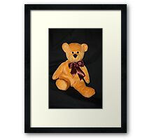 JR Bear's Brown Bow Framed Print