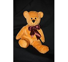JR Bear's Brown Bow Photographic Print