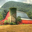 Tiger Mountain Winery's Red Barn by Chelei