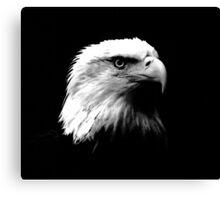 Black & White American Bald Eagle Canvas Print