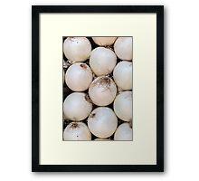 white onion Framed Print