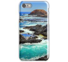 Seal Island HDR iPhone Case/Skin