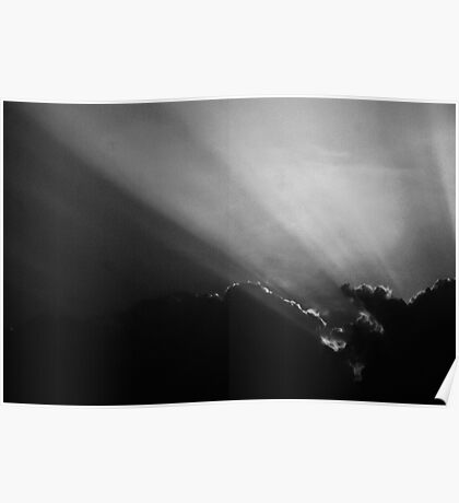 Summer Rays - Black and White Poster
