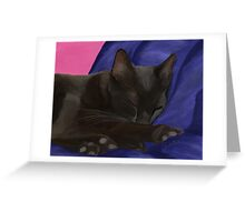 Black Cat Sleeping Greeting Card