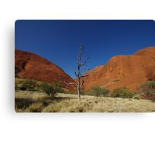 The Olgas & a Lone Tree Canvas Print