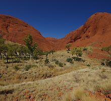 The Olgas by Linda Fury