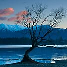Dawn on Lake Wanaka by Neville Jones