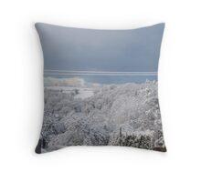 When The Snow Hit #3 Throw Pillow