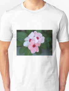 Blooming Beautiful Pink Impatiens Flowers T-Shirt