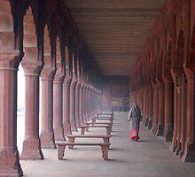 Indian woman in Taj Mahal gardens by Milonk