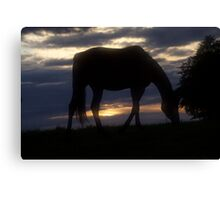 Conquest of Paradise  - Horses . by Brown Sugar .Tribute to - Vangelis . Canvas Print