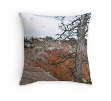 High Country Throw Pillow