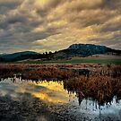 Pigeon Butte ~ Finley Refuge ~ by Charles &amp; Patricia   Harkins ~ Picture Oregon