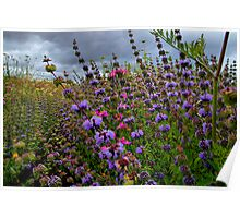 Just For Me ~ Wild Field Mint ~ Poster