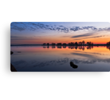 Mirror Mirror on the Lake Canvas Print