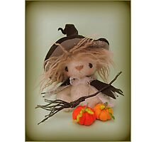 Halloween Witch - Handmade needle felted creation from Teddy Bear Orphans Photographic Print